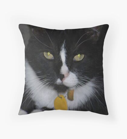 Scootle Bug   Throw Pillow