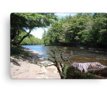 940-Downriver Snooze Canvas Print