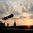 Flight by Alexander Greenwood