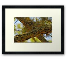 X  - Marks the Spot Framed Print