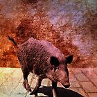 Minority Peccary by DigitalGrail