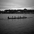 St.John's Regatta by Ryan Piercey