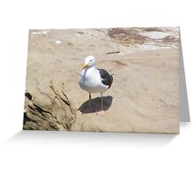 Me and My Shadow ~ La Jolla, California ~ America Greeting Card