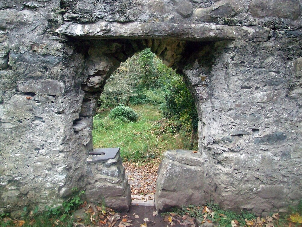 Muckross abbey entrance by John Quinn