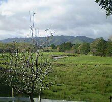 New Zealand Hills by elizabethrose05