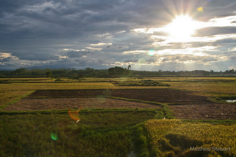 Green Fields by Matthew Stewart