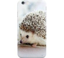 Cute Animals - Hedgehog iPhone Case/Skin