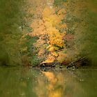 Golden Tree by Eileen McVey