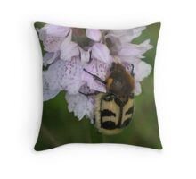 Flower Chafer on Spotted Orchid Throw Pillow