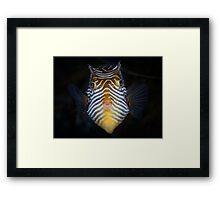 Stay still! I want to kiss you.  Framed Print