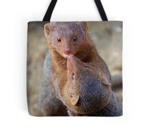 Mongoose wrestling.......   Tote Bag