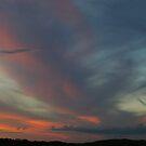 Darkening Skies - Blayney, NSW by Alison Howson