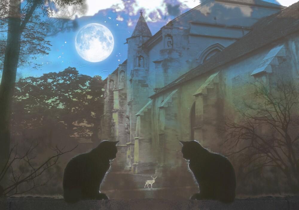 The Watchers by Angela Harburn