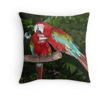 Lovebirds.. Throw Pillow