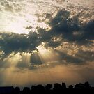 A Sunrays Sky by ienemien