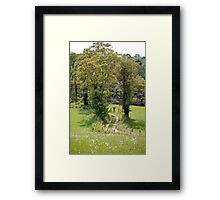 Old Farm Road Framed Print