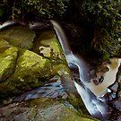 Deep Creek by Crispin  Gardner IPA