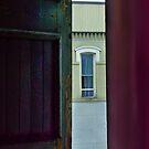 Window view by Sandra Guzman