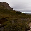 Cradle Mountain and Barn Bluff by Will Hore-Lacy