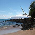 Maluaka Beach, Maui, Hawai'i by Teresa Zieba