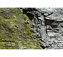 Green and Grey Wall Photographic Print