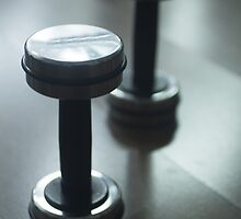 Dumbbell gym metal weights in gym health club by edwardolive