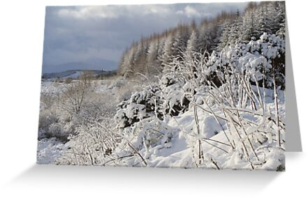 Winter scene at Laggan. by John Cameron