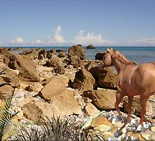 941-Namibian Rocky Shoreline by George W Banks