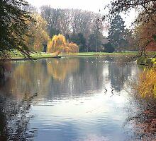 L' Orangerie by Xandru