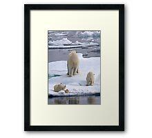 A Bear Behind!    Framed Print
