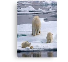 A Bear Behind!    Canvas Print