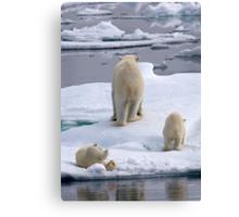 A Bear Behind!    Canvas Print