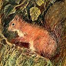 Red Squirrel by Antea