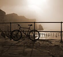 Bicycle Point by mikebov