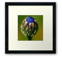 Colors and Textures Framed Print