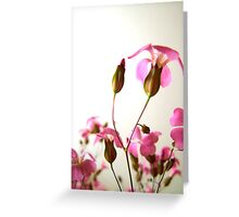 Dainty Greeting Card