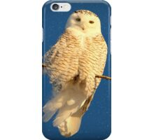 Guardian Angel (snowing) iPhone Case/Skin