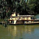 Emmylou Ferry  by tess1731