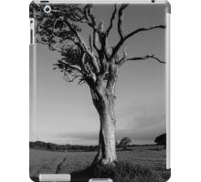 Ageing Gracefully iPad Case/Skin
