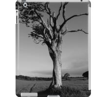 Ageing Gracefully iPad Case/Skin