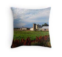Farm Throw Pillow