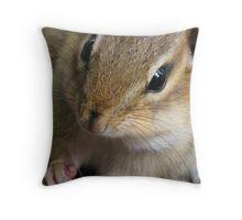 Chipmunk; Up Close & Personal Throw Pillow