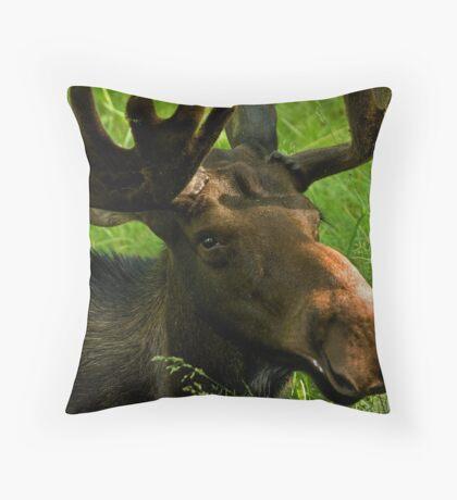 Marty Moose Throw Pillow