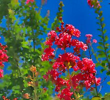 Crepe Myrtle by AngelPhotozzz