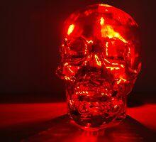 Crystal Skull by TurnerJ