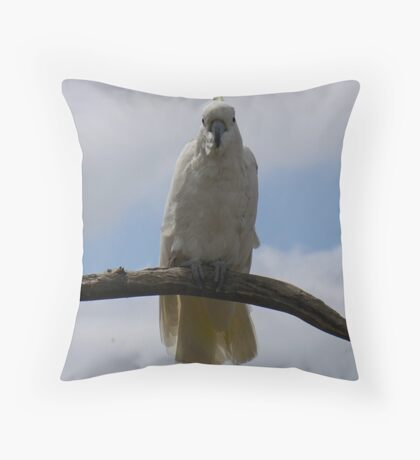 photoj Cocky Throw Pillow