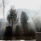 Smoke, Sun and Rain by Martin Hampson