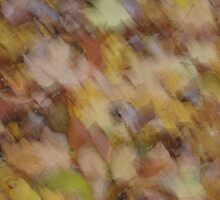 The Spirit of Autumn Leaves by Dianne Rini