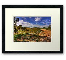 Outback track Framed Print