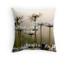 Daisies In The Fog Throw Pillow